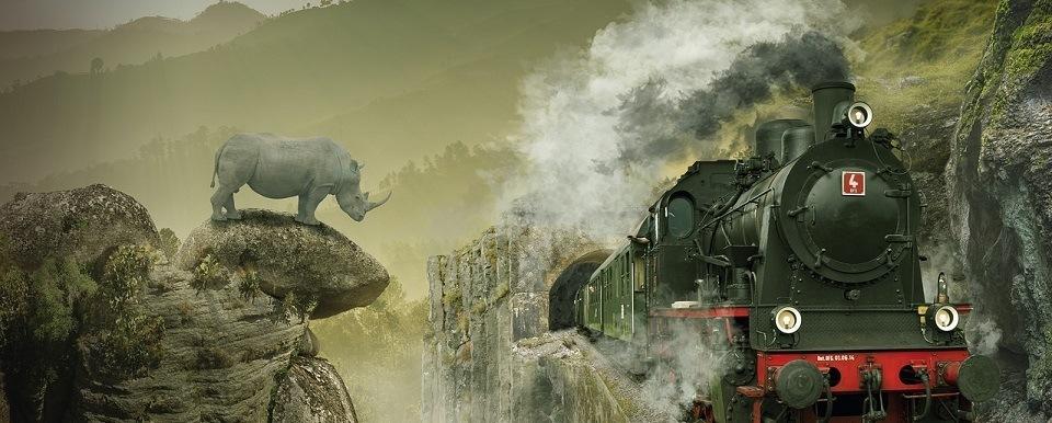 neushoorn en trein en rook